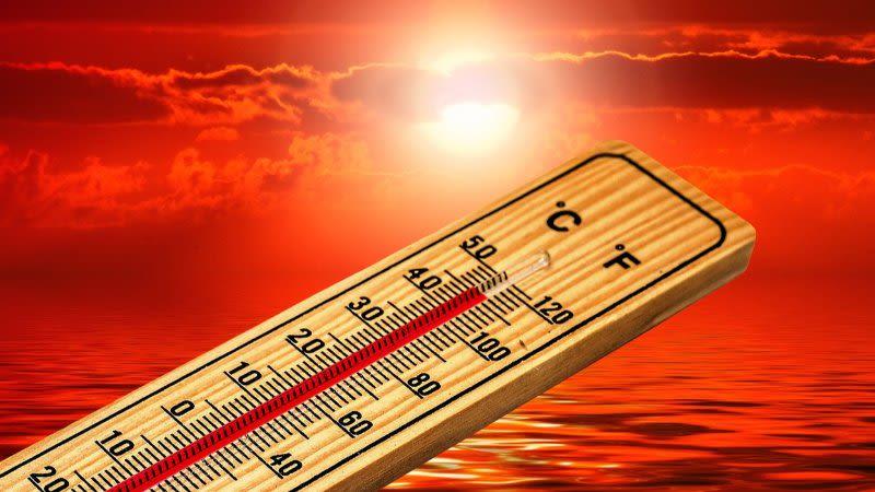 high temperatures canary islands heatwave