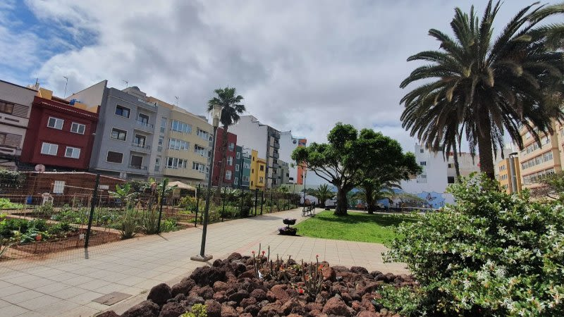 pollution reduced canary islands lockdown