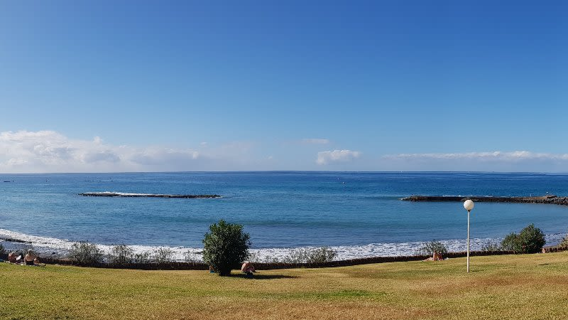 canary islands weather january