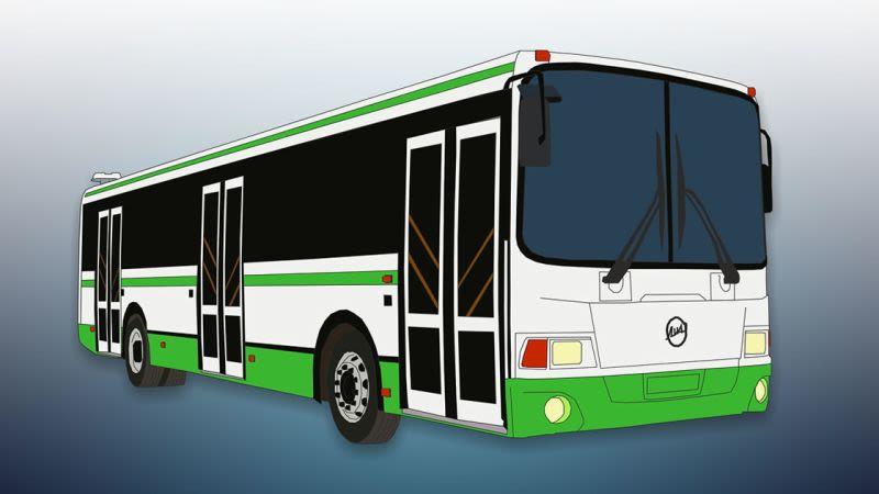 Fuerteventura buses 800 450