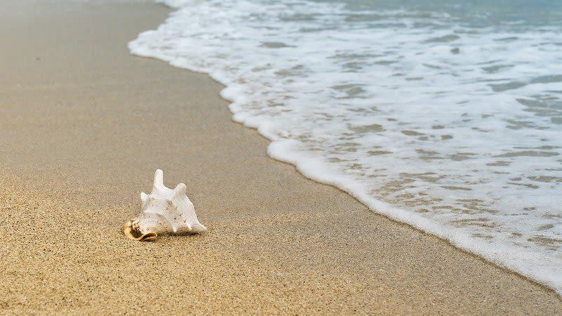 best nudist beaches gran canaria