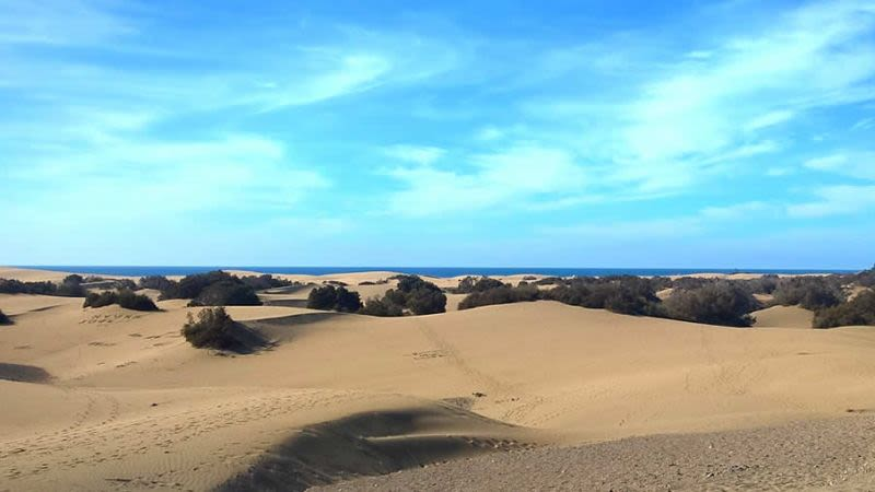 Maspalomas weather january