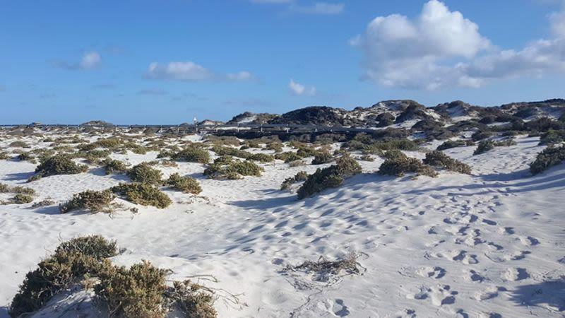 Lanzarote caleton blanco