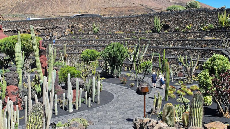 Lanzarote weather may